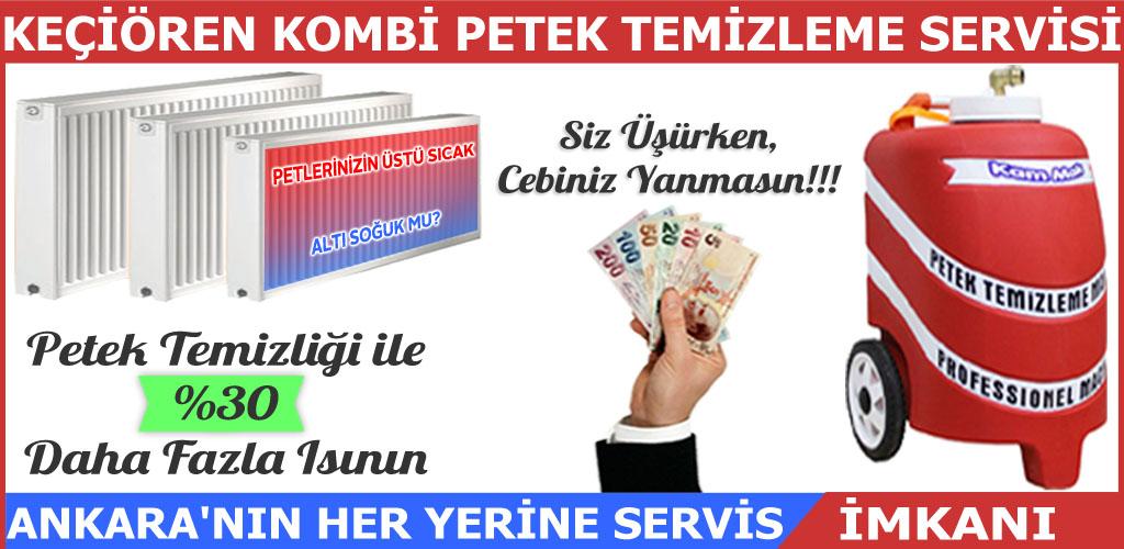 Petek Temizleme Keçiören Ankara