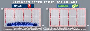 Keçiören Petek Temizleme Ankara
